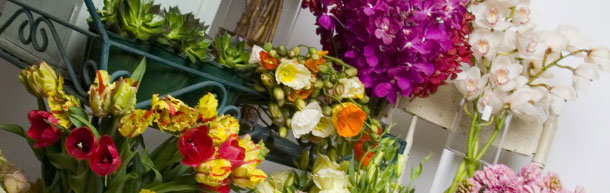 Flower Infusion - Online Order flowers and bouquets